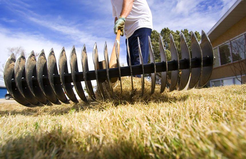 830053 – man doing spring yard maintenance (focus on rake)